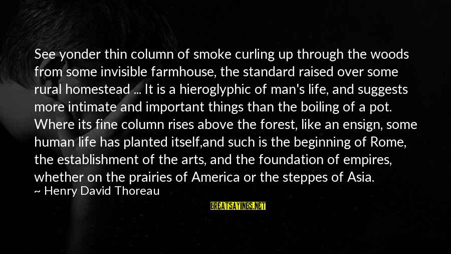 Invisible Man Invisible Sayings By Henry David Thoreau: See yonder thin column of smoke curling up through the woods from some invisible farmhouse,
