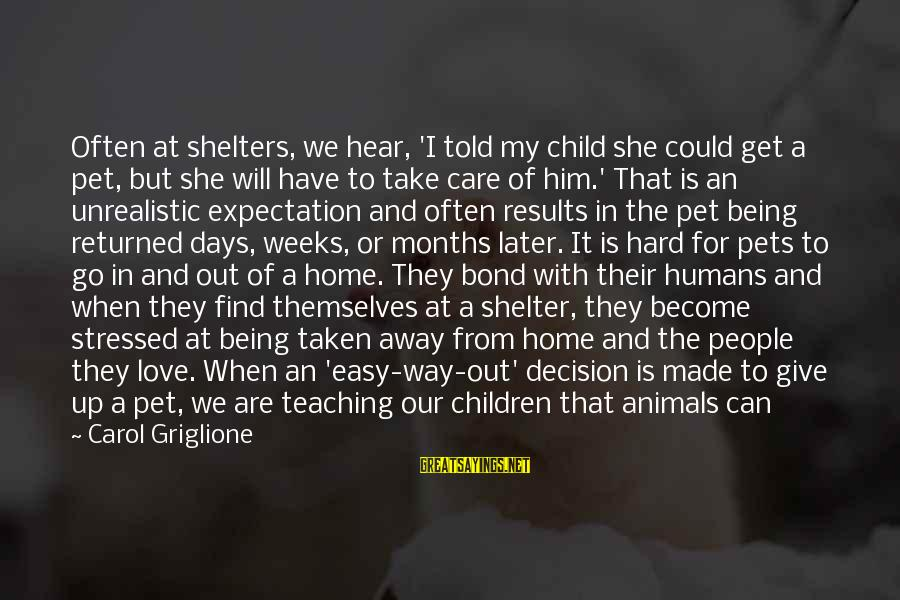 It Could Be Love Sayings By Carol Griglione: Often at shelters, we hear, 'I told my child she could get a pet, but
