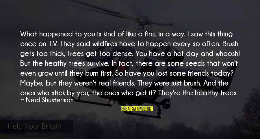 It Is Hot Sayings By Neal Shusterman: What happened to you is kind of like a fire, in a way. I saw