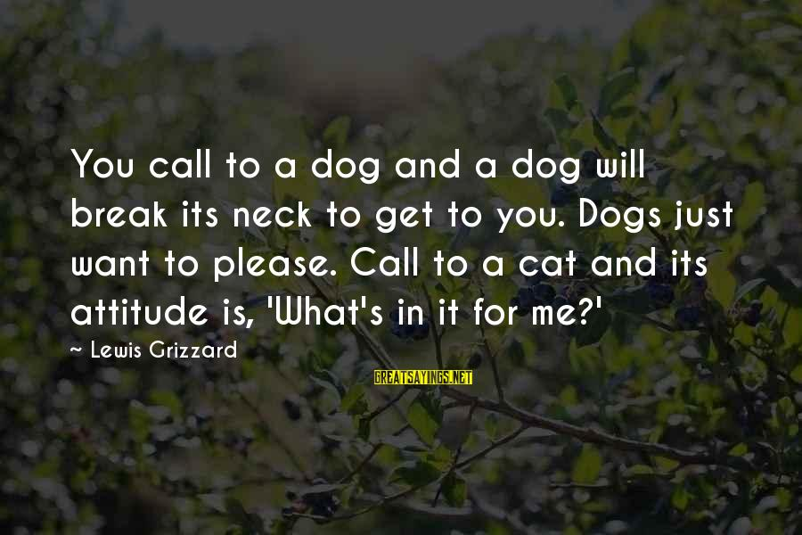 It's Me Attitude Sayings By Lewis Grizzard: You call to a dog and a dog will break its neck to get to
