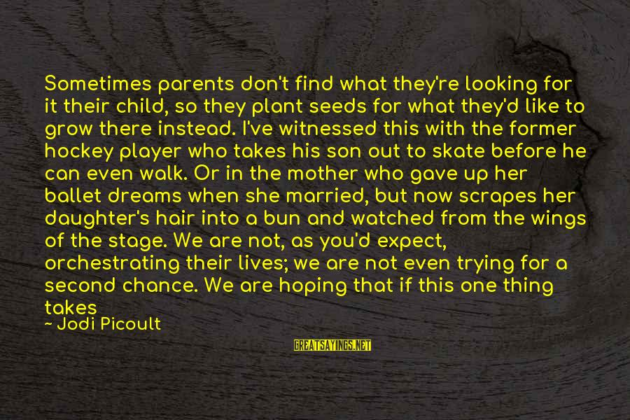 I've Watched You Grow Sayings By Jodi Picoult: Sometimes parents don't find what they're looking for it their child, so they plant seeds