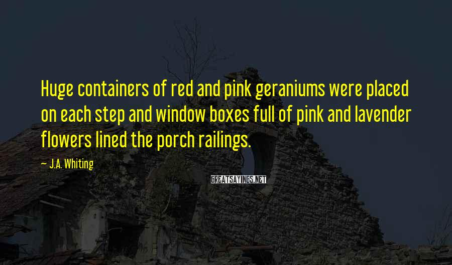 J.A. Whiting Sayings: Huge containers of red and pink geraniums were placed on each step and window boxes