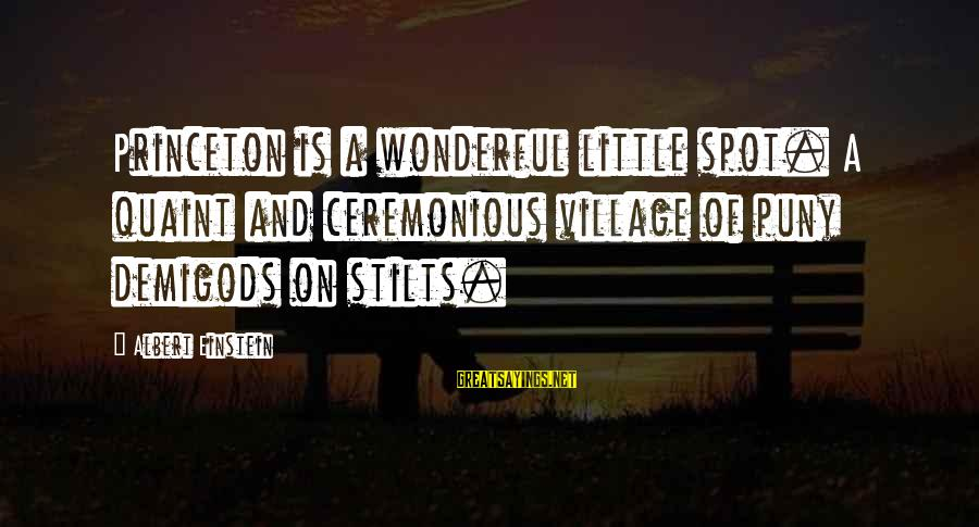 Jabba Language Sayings By Albert Einstein: Princeton is a wonderful little spot. A quaint and ceremonious village of puny demigods on