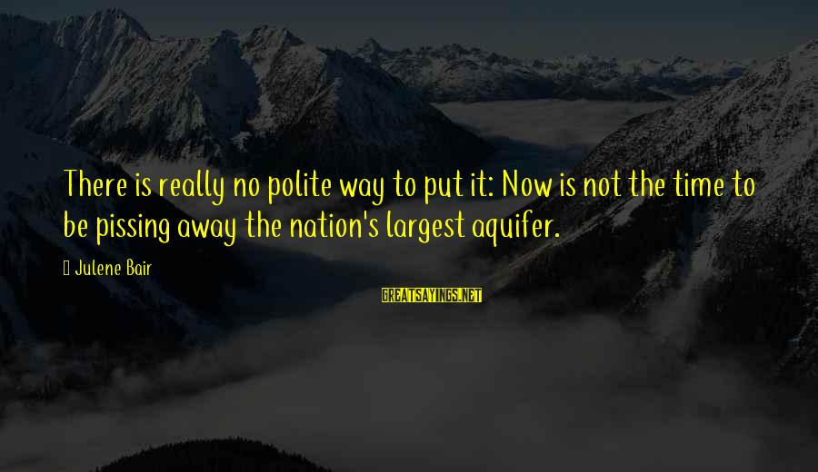 Jack Finch Sayings By Julene Bair: There is really no polite way to put it: Now is not the time to