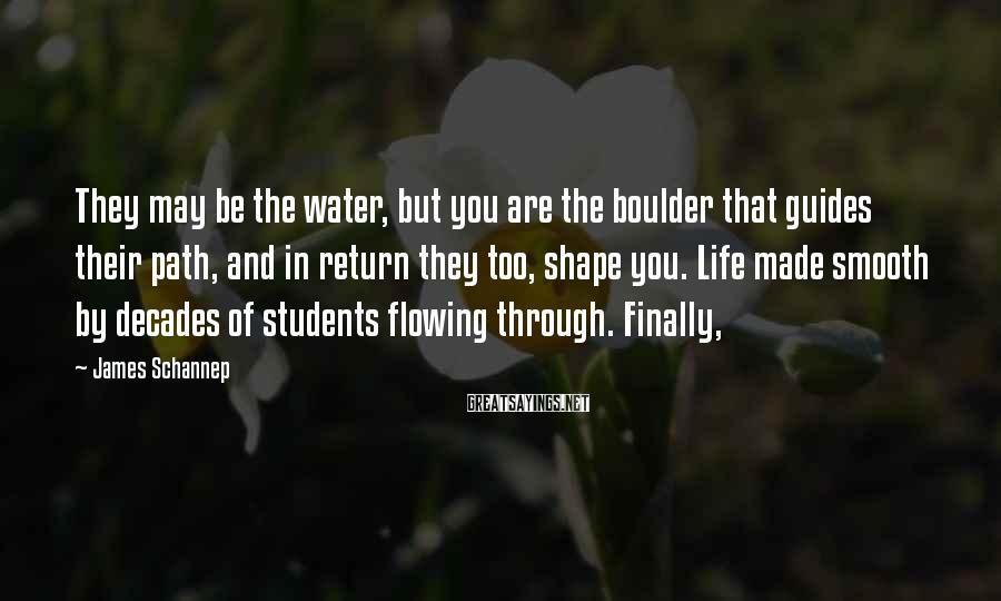 James Schannep Sayings: They may be the water, but you are the boulder that guides their path, and