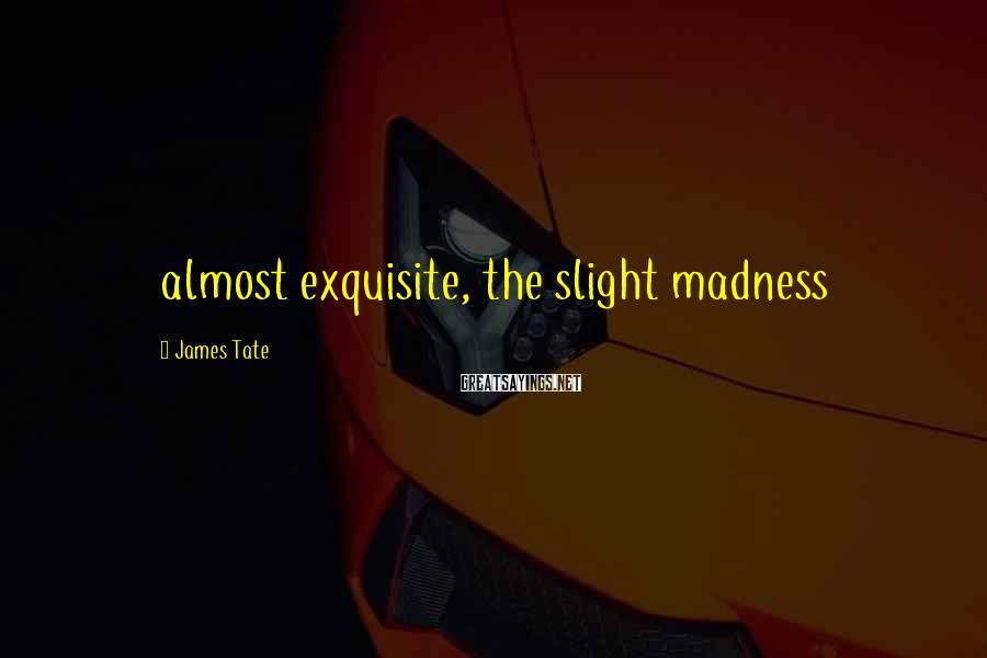 James Tate Sayings: almost exquisite, the slight madness