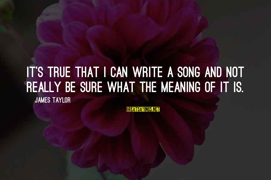 James Taylor Best Song Sayings By James Taylor: It's true that I can write a song and not really be sure what the