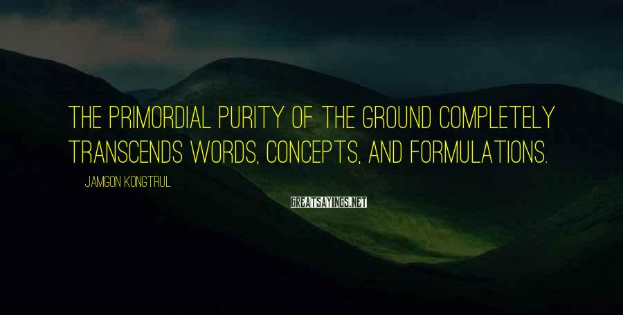 Jamgon Kongtrul Sayings: The primordial purity of the ground completely transcends words, concepts, and formulations.