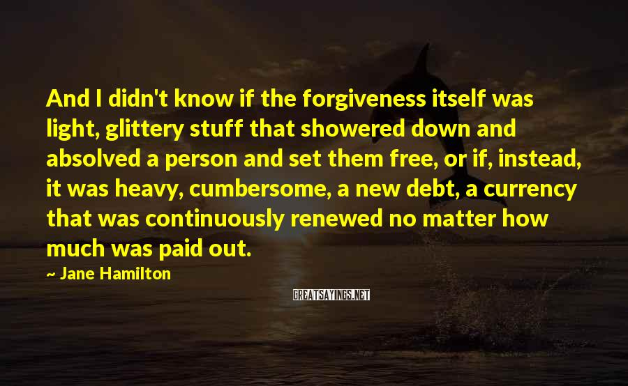 Jane Hamilton Sayings: And I didn't know if the forgiveness itself was light, glittery stuff that showered down