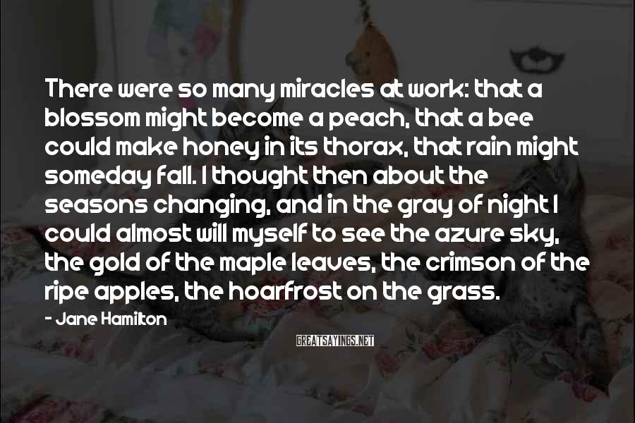 Jane Hamilton Sayings: There were so many miracles at work: that a blossom might become a peach, that