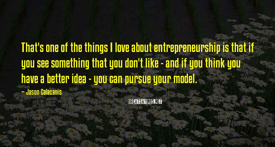 Jason Calacanis Sayings: That's one of the things I love about entrepreneurship is that if you see something