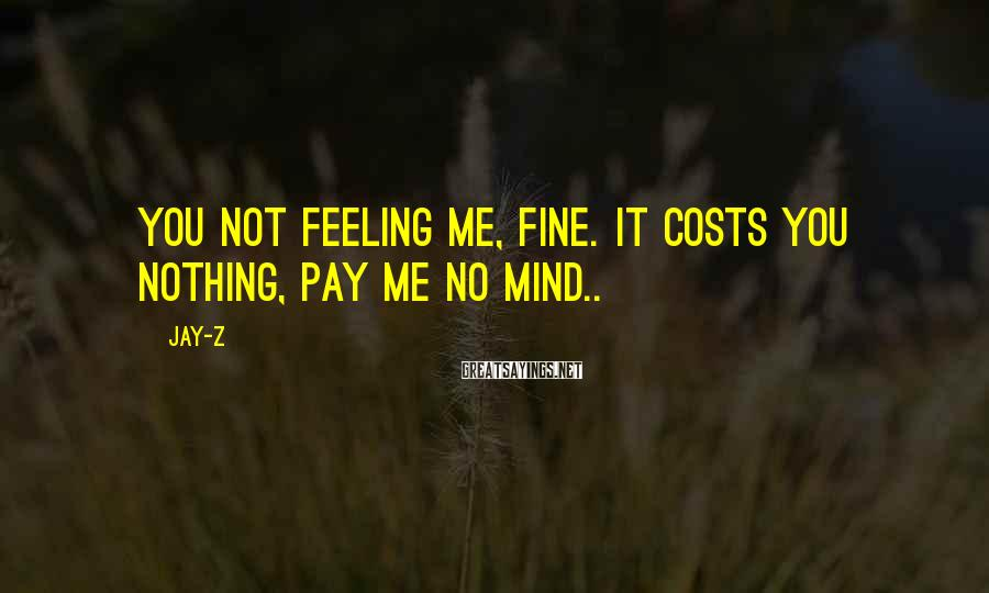 Jay-Z Sayings: You not feeling me, fine. It costs you nothing, pay me no mind..
