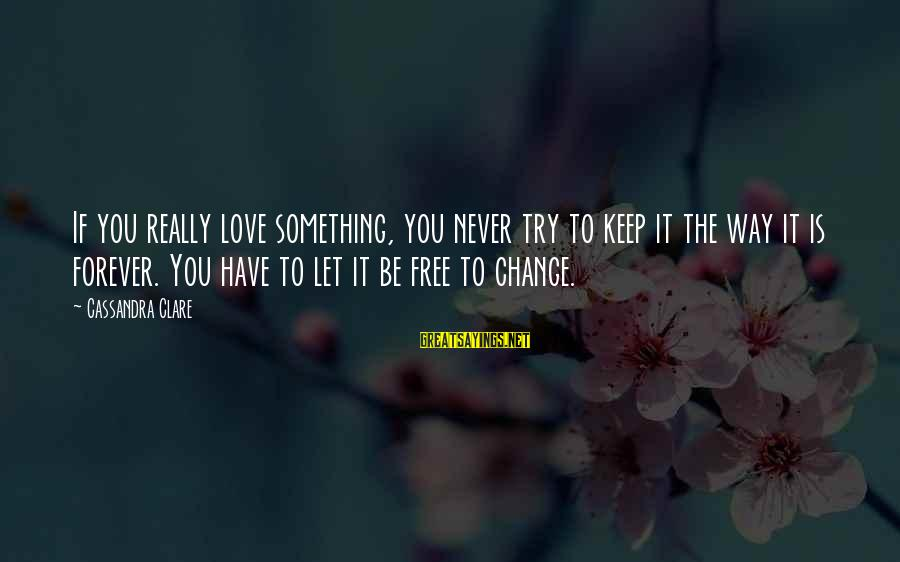 Jocelyn's Sayings By Cassandra Clare: If you really love something, you never try to keep it the way it is