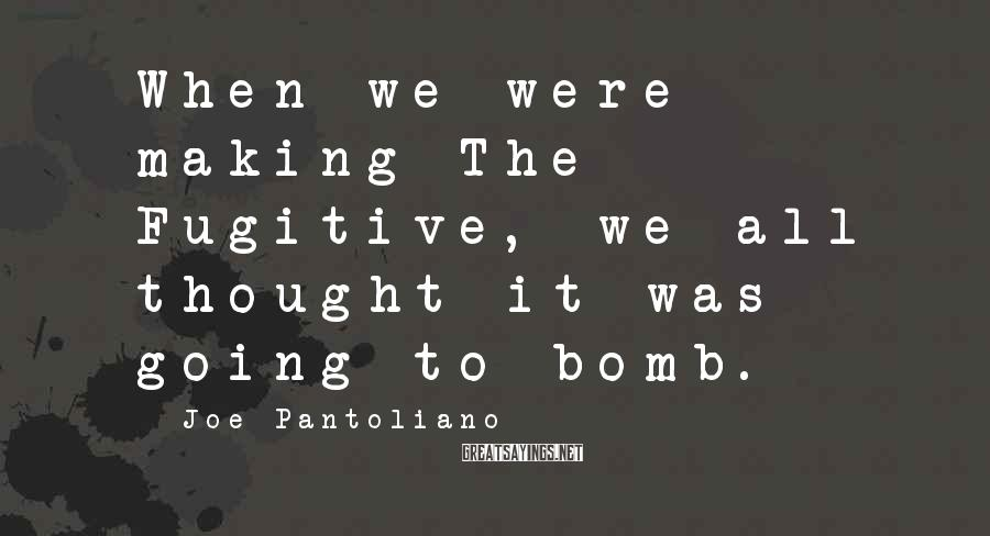 Joe Pantoliano Sayings: When we were making The Fugitive, we all thought it was going to bomb.