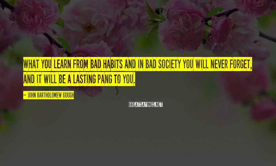 John Bartholomew Gough Sayings: What you learn from bad habits and in bad society you will never forget, and