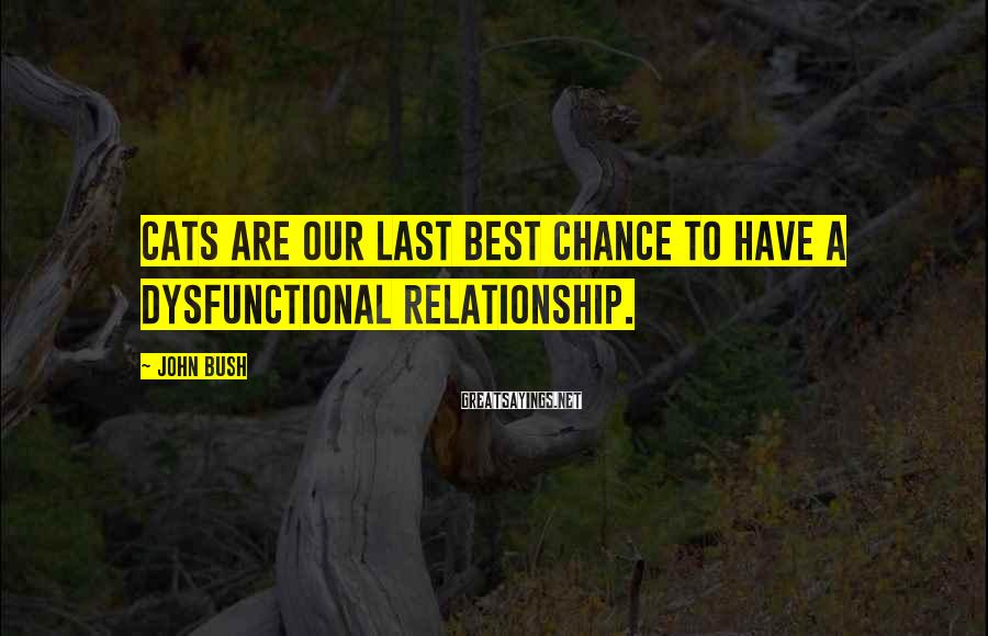 John Bush Sayings: Cats are our last best chance to have a dysfunctional relationship.