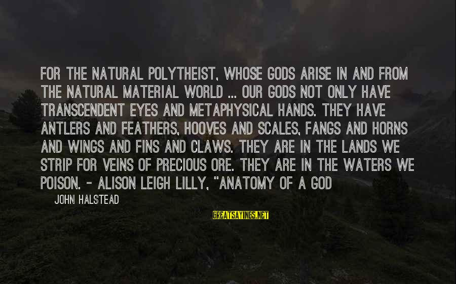 John C Lilly Sayings By John Halstead: For the natural polytheist, whose gods arise in and from the natural material world ...