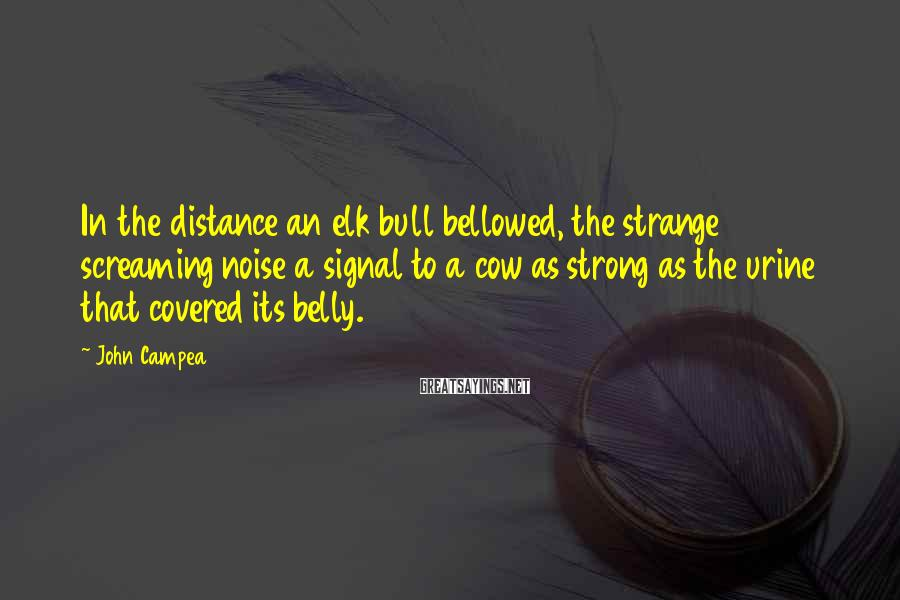 John Campea Sayings: In the distance an elk bull bellowed, the strange screaming noise a signal to a