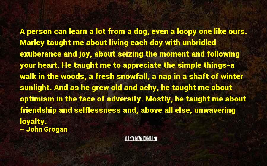 John Grogan Sayings: A person can learn a lot from a dog, even a loopy one like ours.