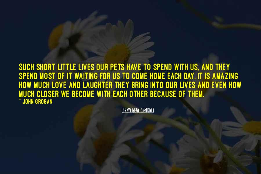 John Grogan Sayings: Such short little lives our pets have to spend with us, and they spend most