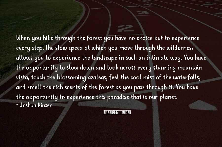 Joshua Kinser Sayings: When you hike through the forest you have no choice but to experience every step.