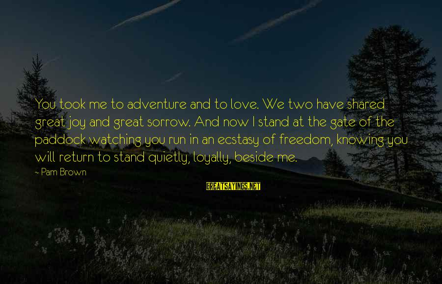 Joy Shared Sayings By Pam Brown: You took me to adventure and to love. We two have shared great joy and