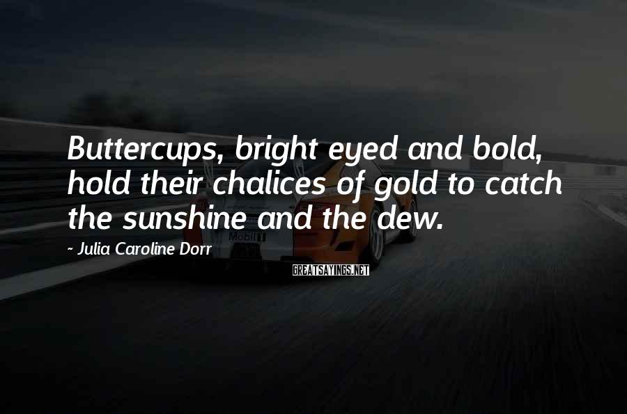 Julia Caroline Dorr Sayings: Buttercups, bright eyed and bold, hold their chalices of gold to catch the sunshine and