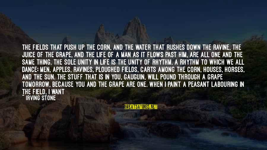 Just Want A Man Sayings By Irving Stone: The fields that push up the corn, and the water that rushes down the ravine,