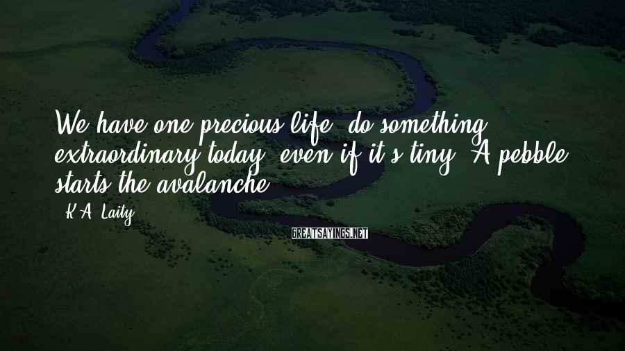 K.A. Laity Sayings: We have one precious life: do something extraordinary today, even if it's tiny. A pebble