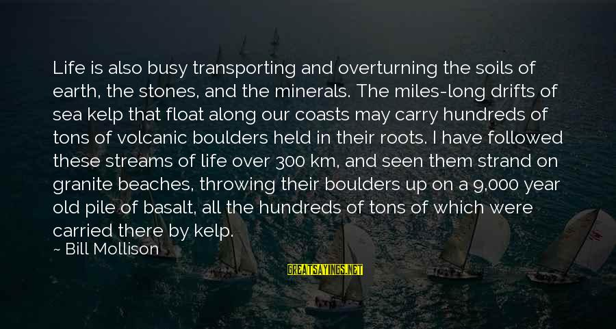 Kelp Sayings By Bill Mollison: Life is also busy transporting and overturning the soils of earth, the stones, and the