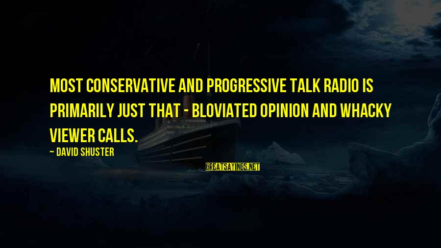 Kill Them With Your Success Sayings By David Shuster: Most conservative and progressive talk radio is primarily just that - bloviated opinion and whacky