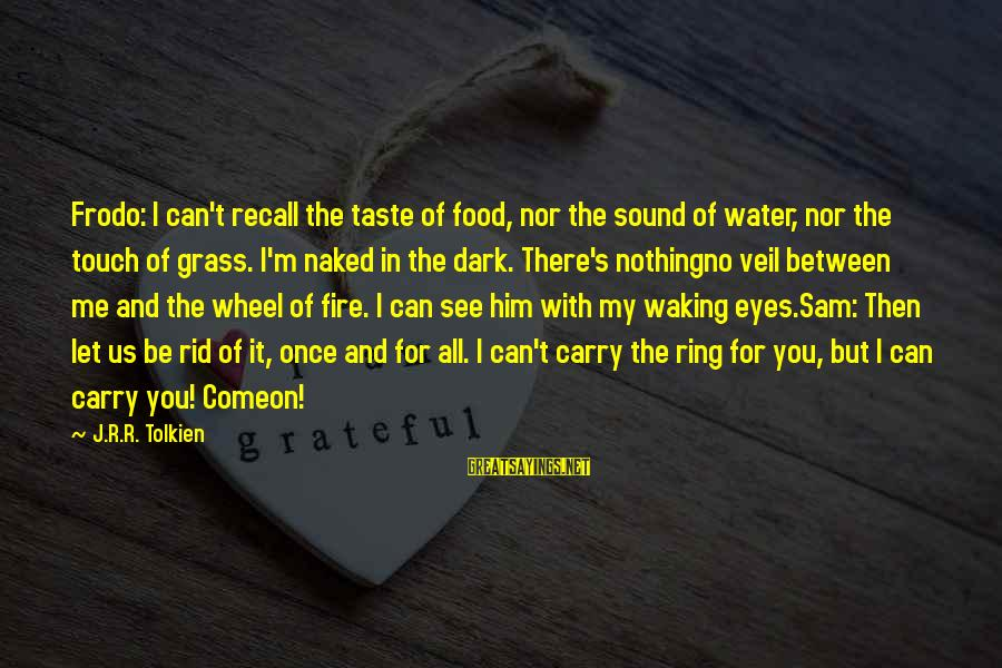 King And I Sayings By J.R.R. Tolkien: Frodo: I can't recall the taste of food, nor the sound of water, nor the