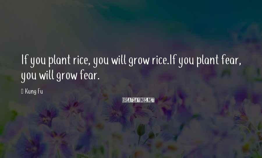 Kung Fu Sayings: If you plant rice, you will grow rice.If you plant fear, you will grow fear.
