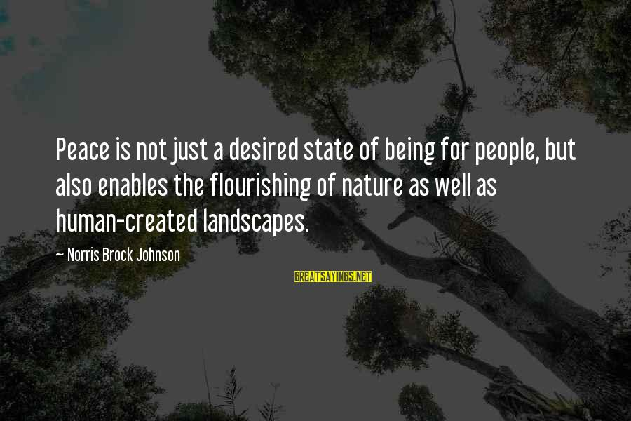 Kyoto's Sayings By Norris Brock Johnson: Peace is not just a desired state of being for people, but also enables the
