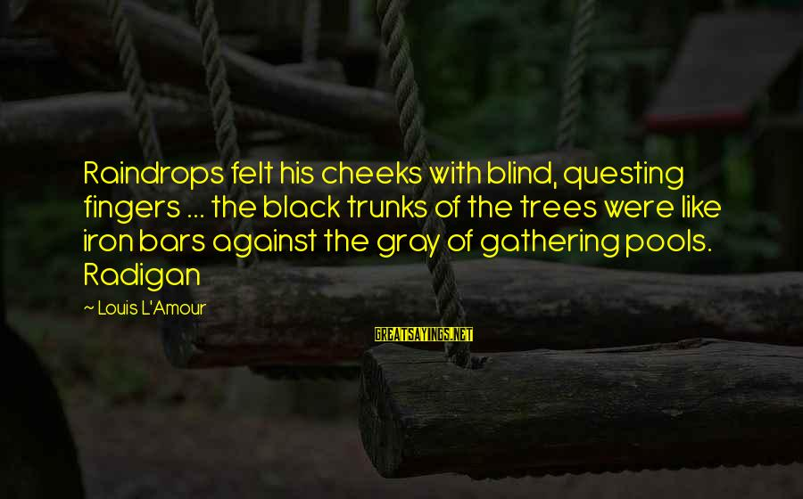 L Amour Sayings By Louis L'Amour: Raindrops felt his cheeks with blind, questing fingers ... the black trunks of the trees