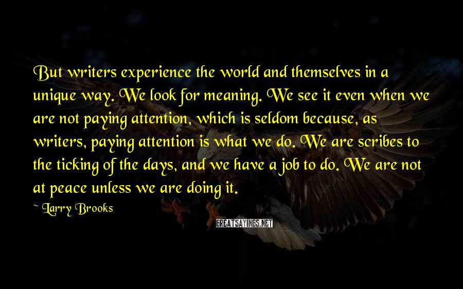 Larry Brooks Sayings: But writers experience the world and themselves in a unique way. We look for meaning.
