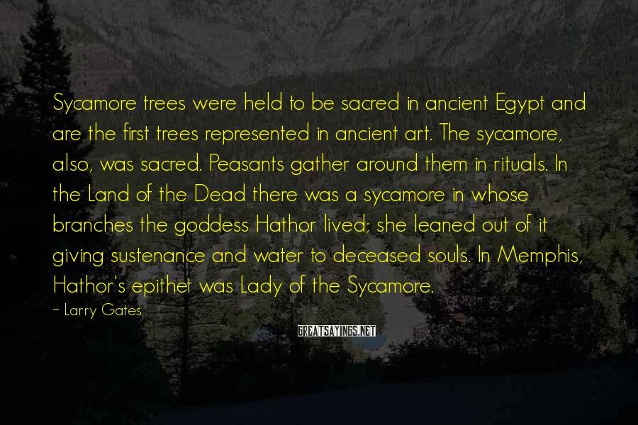 Larry Gates Sayings: Sycamore trees were held to be sacred in ancient Egypt and are the first trees