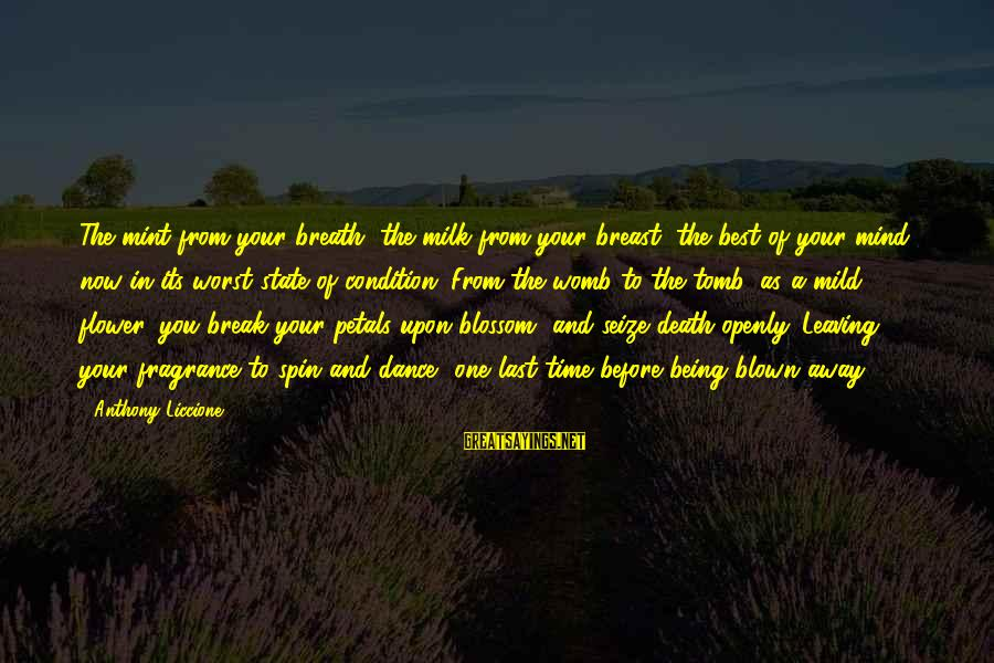 Last Breath Before Death Sayings By Anthony Liccione: The mint from your breath, the milk from your breast, the best of your mind,