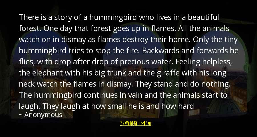Laugh Hard Sayings By Anonymous: There is a story of a hummingbird who lives in a beautiful forest. One day
