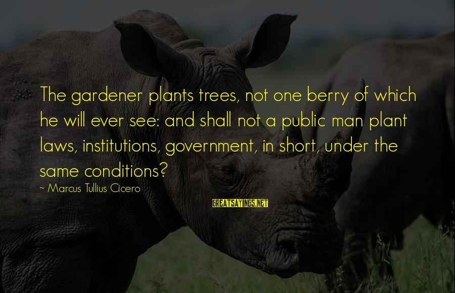 Law And Government Sayings By Marcus Tullius Cicero: The gardener plants trees, not one berry of which he will ever see: and shall