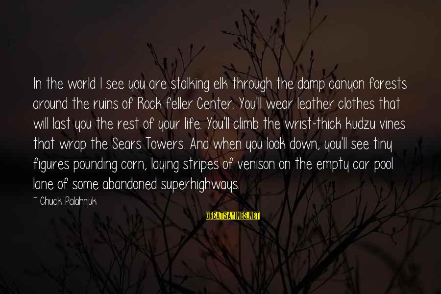 Laying Down Sayings By Chuck Palahniuk: In the world I see you are stalking elk through the damp canyon forests around