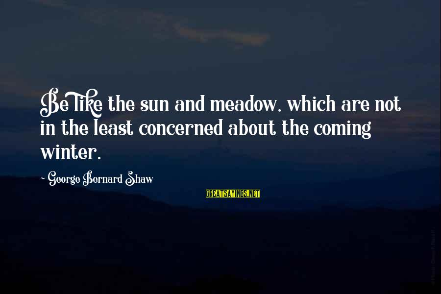 Lds Ctr Sayings By George Bernard Shaw: Be like the sun and meadow, which are not in the least concerned about the