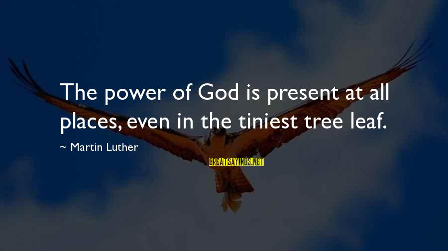 Leafs Sayings By Martin Luther: The power of God is present at all places, even in the tiniest tree leaf.