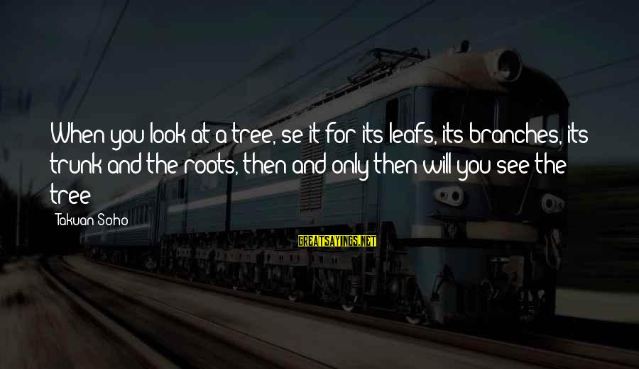 Leafs Sayings By Takuan Soho: When you look at a tree, se it for its leafs, its branches, its trunk