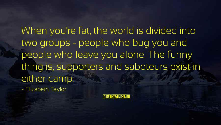 Leave Things Alone Sayings By Elizabeth Taylor: When you're fat, the world is divided into two groups - people who bug you