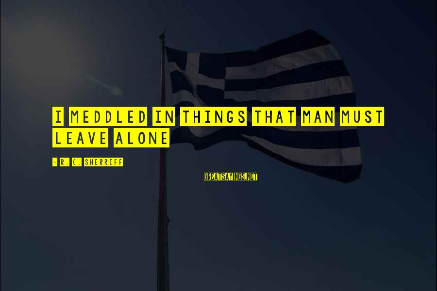 Leave Things Alone Sayings By R. C. Sherriff: I meddled in things that man must leave alone
