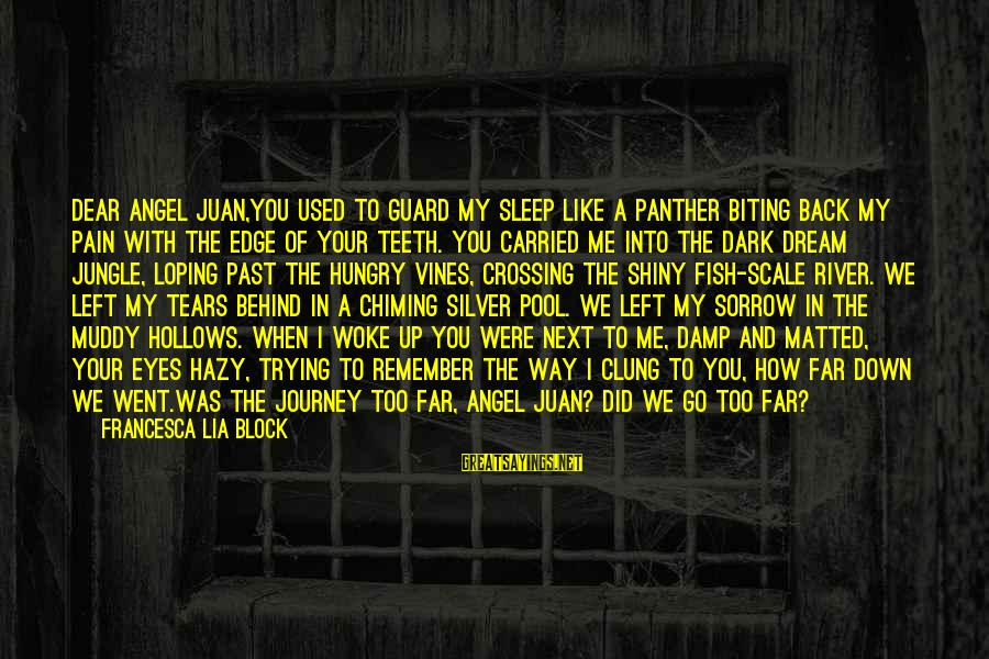 Left The Past Sayings By Francesca Lia Block: Dear Angel Juan,You used to guard my sleep like a panther biting back my pain