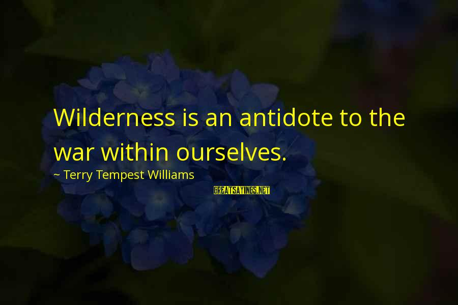 Let It Snow Hallmark Movie Sayings By Terry Tempest Williams: Wilderness is an antidote to the war within ourselves.