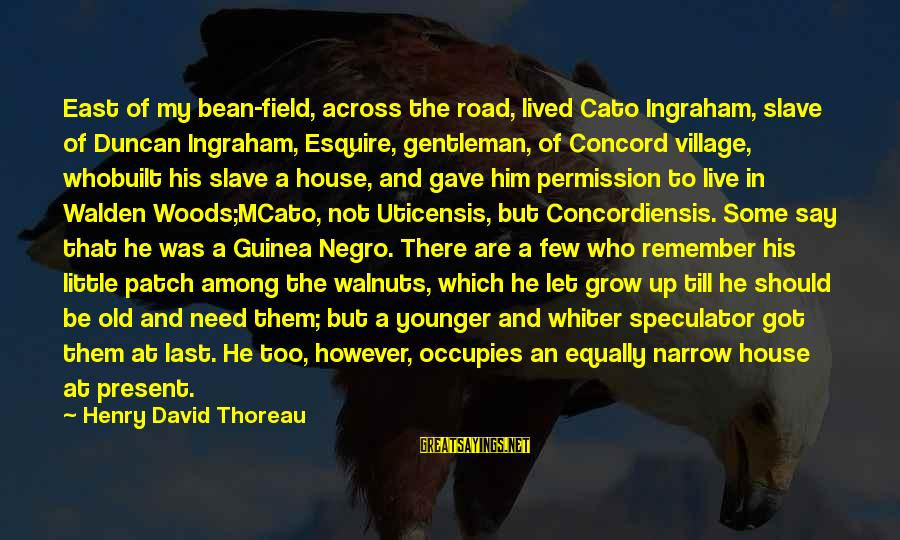 Let Them Live Sayings By Henry David Thoreau: East of my bean-field, across the road, lived Cato Ingraham, slave of Duncan Ingraham, Esquire,