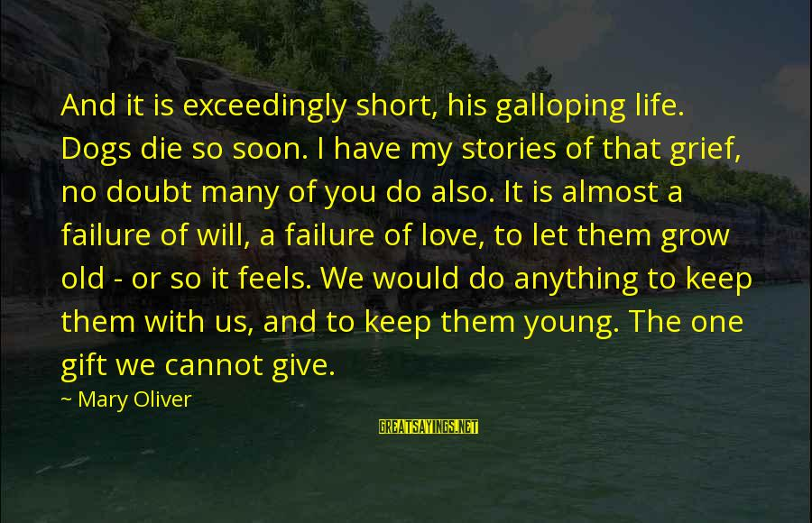 Let Us Do Or Die Sayings By Mary Oliver: And it is exceedingly short, his galloping life. Dogs die so soon. I have my